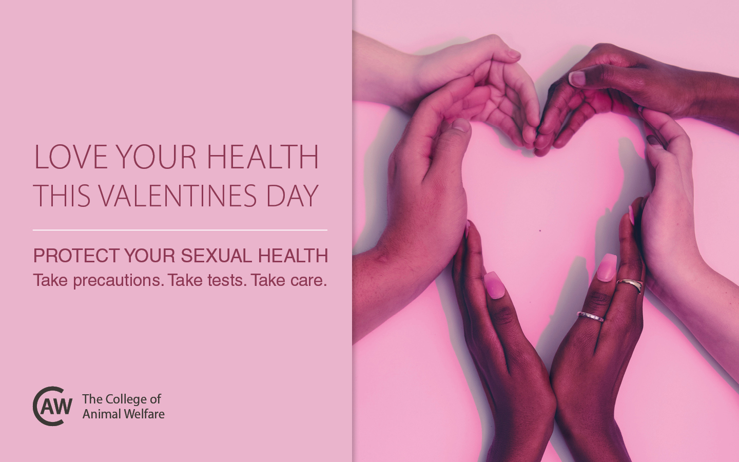 Valentines day sexual health blog