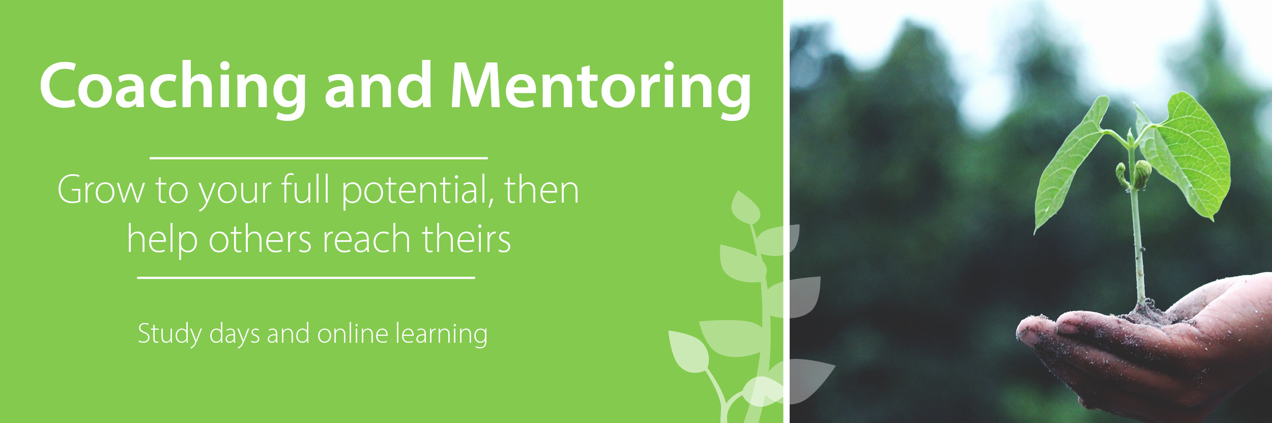 Gain practical skills to help coach and mentor others